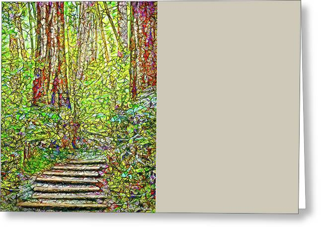 Ancient Forest Path - Tamalpais California Greeting Card by Joel Bruce Wallach