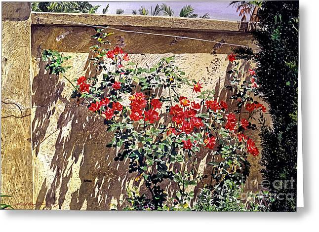 Ancient Roses Greeting Card by David Lloyd Glover