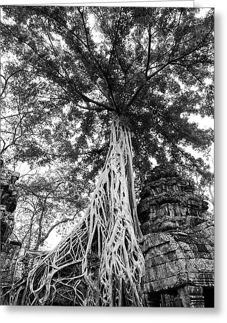 Of Temples And Trees In Black And White Greeting Card