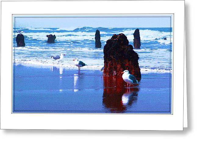 Ancient Trees And Seagulls At Neskowin Beach Greeting Card by Margaret Hood