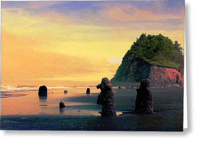 Ancient Trees At Neskowin Beach Greeting Card