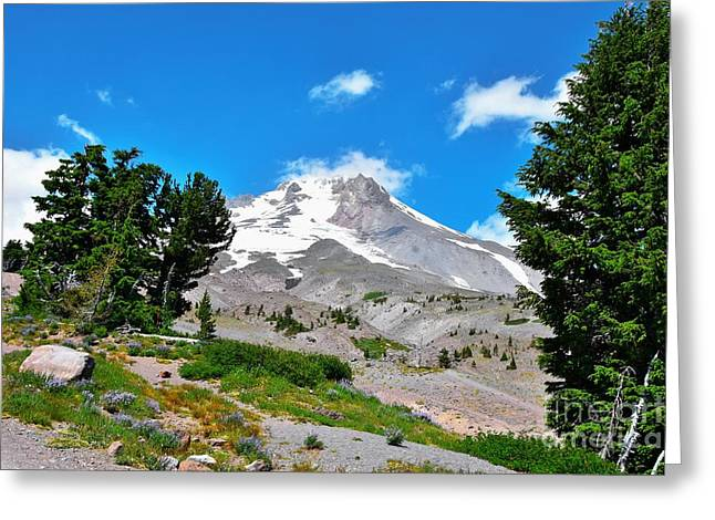 Mt Hood Oregon - Summertime Greeting Card by Scott Cameron