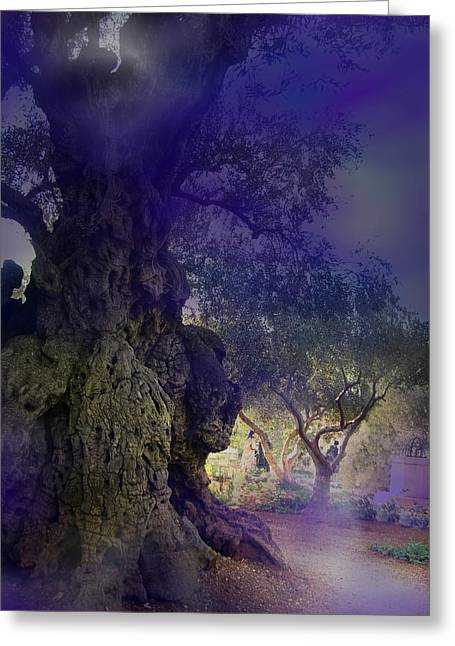 Greeting Card featuring the photograph Ancient Witness Tree Garden Of Gethsemane Vision by Anastasia Savage Ealy