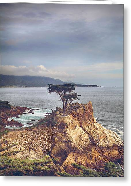 And Yet Here I Still Stand Greeting Card by Laurie Search