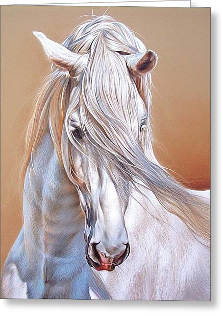 Andalusian - Detail Greeting Card by Elena Kolotusha