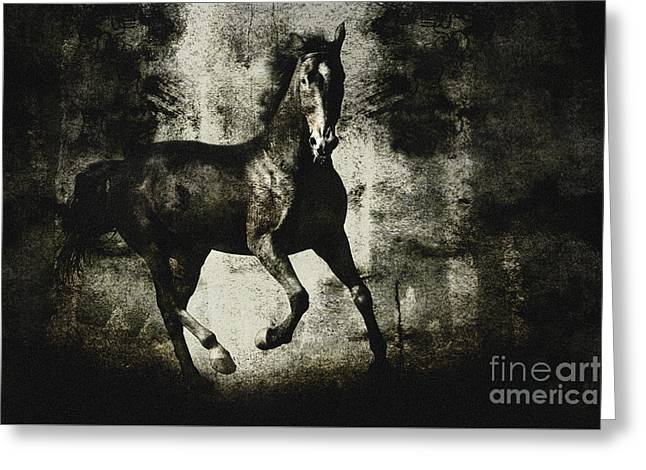 Andalusian Horse Greeting Card by Dimitar Hristov