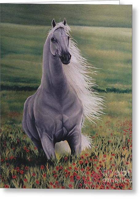 Andalusian Spirit Greeting Card by Louise Green