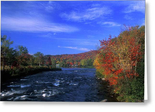 Androscoggin River Headwaters Greeting Card by John Burk