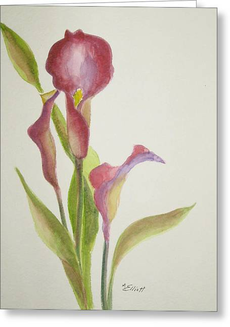Andy's Calla Lillies Greeting Card