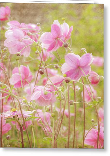 Anemone Dance Greeting Card