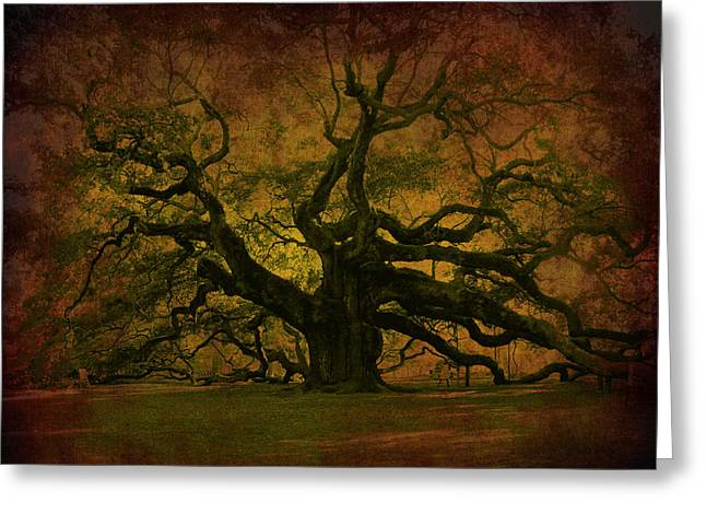 Angel Oak 3 Charleston Greeting Card
