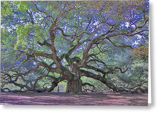 Angel Oak, John's Island, Sc Greeting Card by Garry Turpin