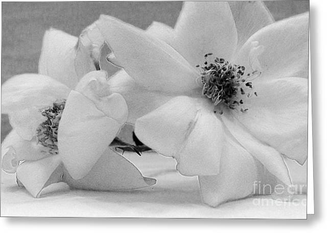 White Lightening Greeting Cards - Angel Roses Greeting Card by Marsha Heiken