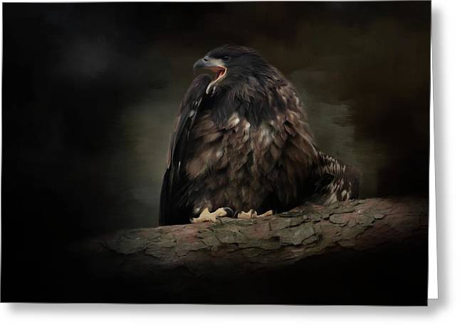 Angry Eagle Chick Greeting Card