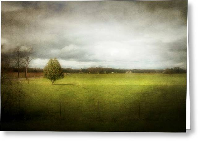 Angustown Pasture Greeting Card by Cynthia Lassiter