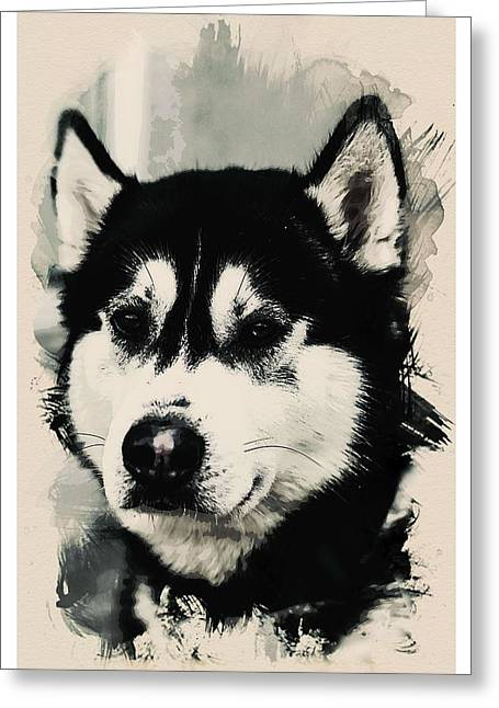 Animal Kingdom Series - Alaskan Huskie Greeting Card