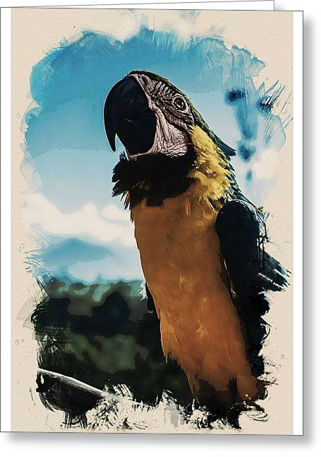 Animal Kingdom Series - Amazonian Macaw Parrot Greeting Card