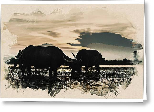 Animal Kingdom Series - Buffalo Greeting Card
