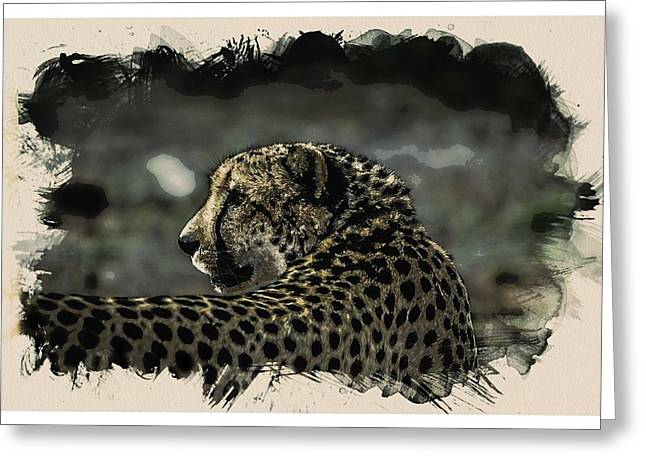 Animal Kingdom Series - Cheetah Greeting Card