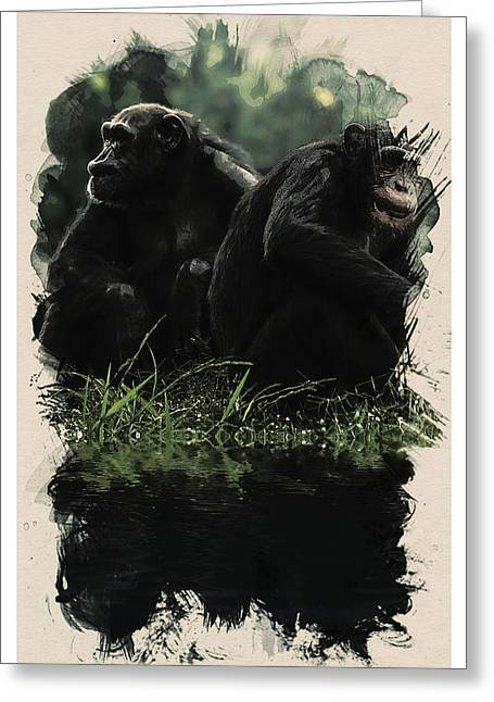 Animal Kingdom Series - Chimps Greeting Card