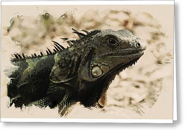 Animal Kingdom Series - Iguana Greeting Card