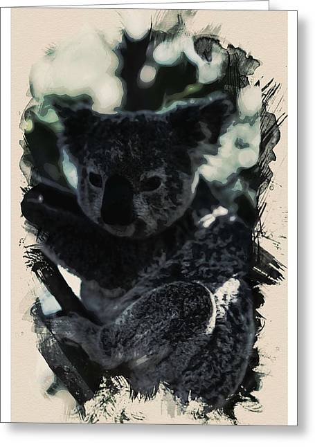 Animal Kingdom Series - Koala Greeting Card