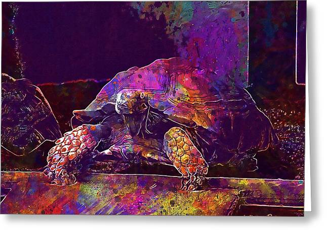 Greeting Card featuring the digital art Animal Turtle Zoo  by PixBreak Art