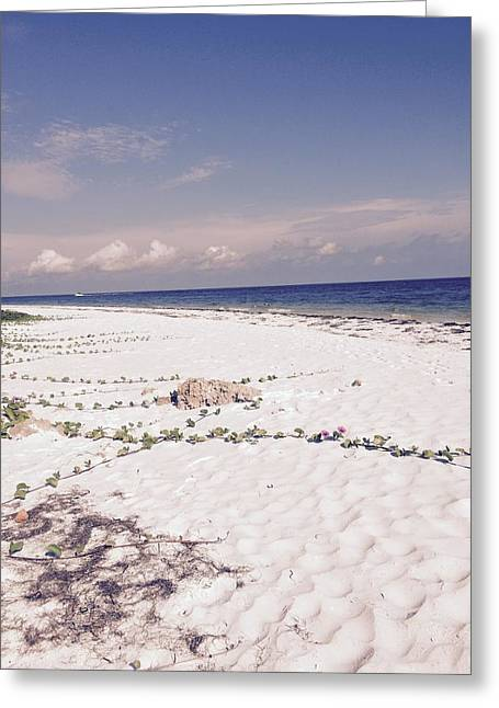 Greeting Card featuring the photograph Anna Maria Island Beyond The White Sand by Jean Marie Maggi