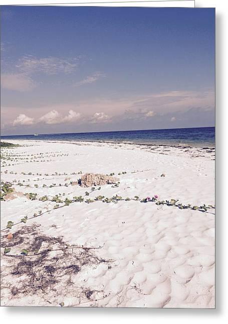 Anna Maria Island Beyond The White Sand Greeting Card