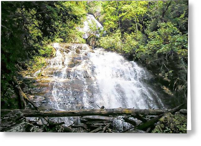 Anna Ruby Falls Greeting Card