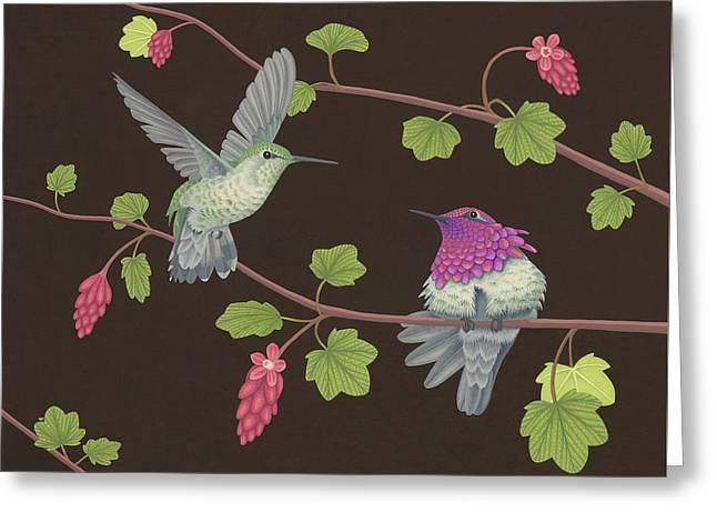 Anna's Hummingbirds Greeting Card