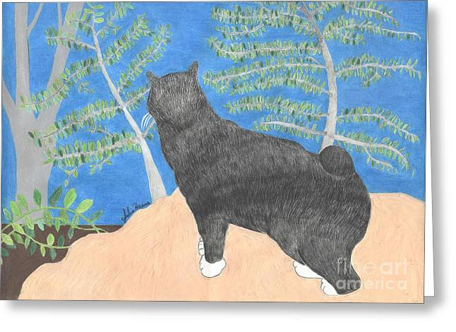 Annie The Cat Looking Over The Hillside Greeting Card