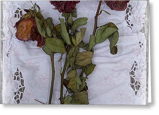Anniversary Roses Greeting Card by Alexis Rotella