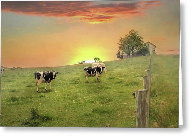 Annville Cows Greeting Card by Lori Deiter