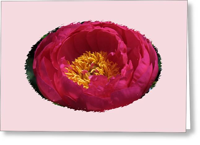 Another Beauty Greeting Card