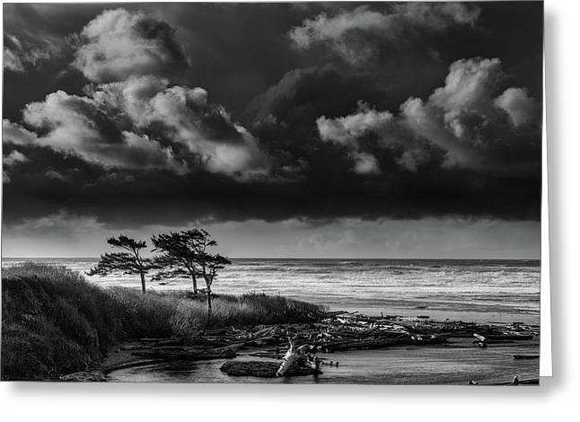 Greeting Card featuring the photograph Another Day At Kalaloch Beach by Dan Mihai