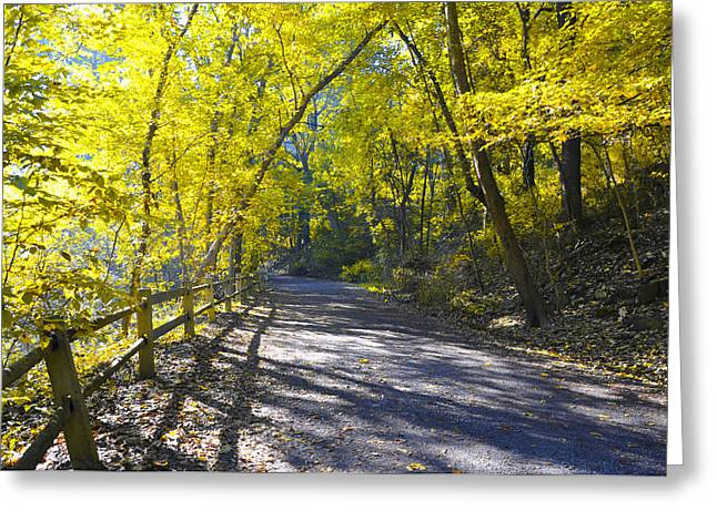 Wissahickon Greeting Cards - Another Fall in Philadelphia Greeting Card by Bill Cannon