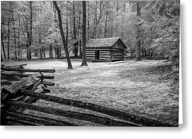 Another Isolated Cabin Greeting Card by Jon Glaser