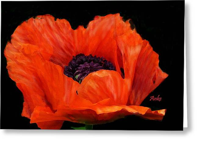 Another Red Poppy Greeting Card by Anke Wheeler