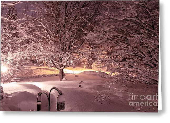 Another Snow Storm Greeting Card