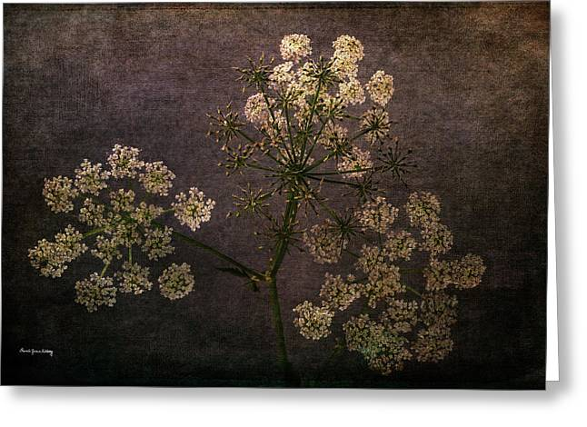 Greeting Card featuring the photograph Anthriscus Sylvestris by Randi Grace Nilsberg