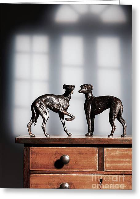 Antique Bronze Greyhound Dogs Greeting Card by Amanda Elwell