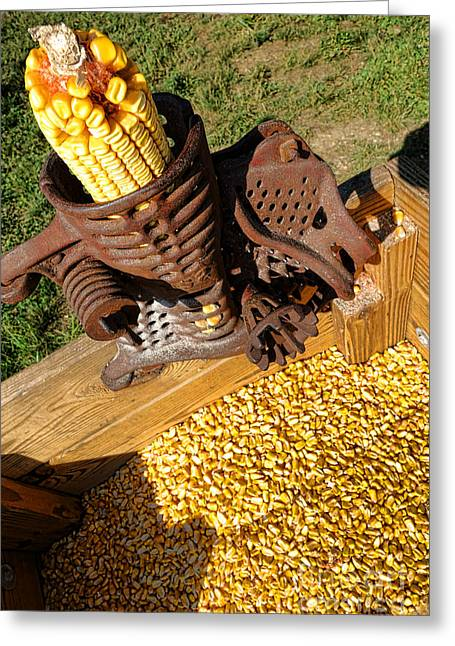 Antique Corn Sheller Greeting Card by Olivier Le Queinec
