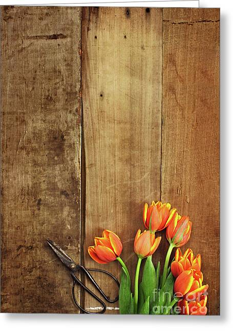 Greeting Card featuring the photograph Antique Scissors And Tulips by Stephanie Frey