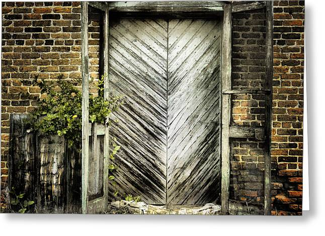 Screen Door Greeting Cards - Antique Store Door Greeting Card by Sari Sauls