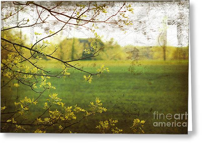 Antiqued Grunge Landscape Greeting Card by Sandra Cunningham