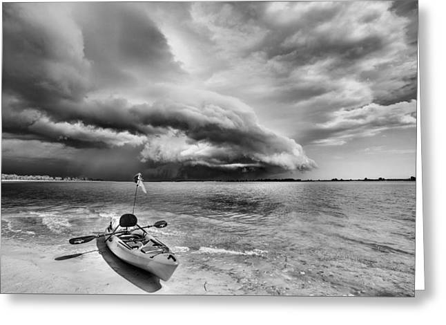 Any Port In A Storm Black And White Greeting Card