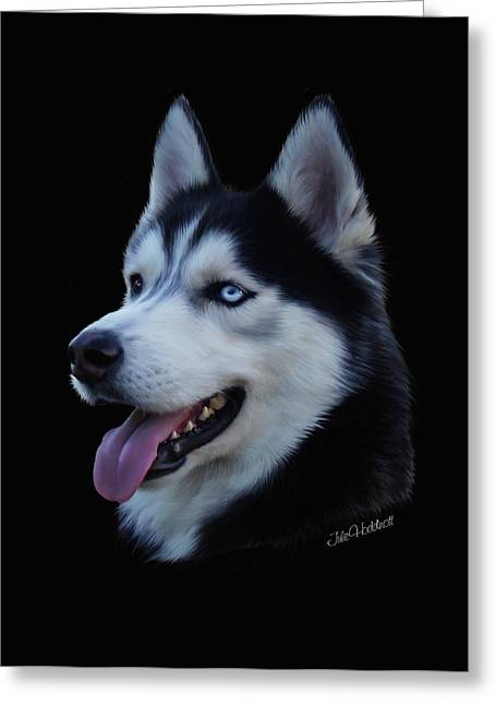 Husky Greeting Cards - Apollo Greeting Card by Julie L Hoddinott