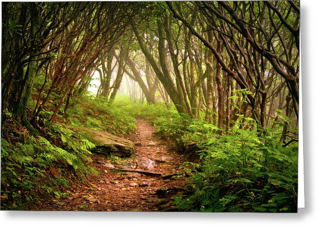 Appalachian Hiking Trail - Blue Ridge Mountains Forest Fog Nature Landscape Greeting Card