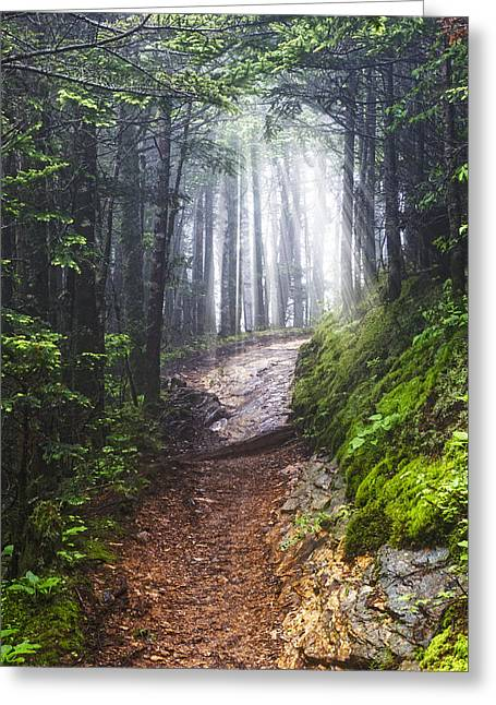 Appalachian Light Greeting Card by Debra and Dave Vanderlaan